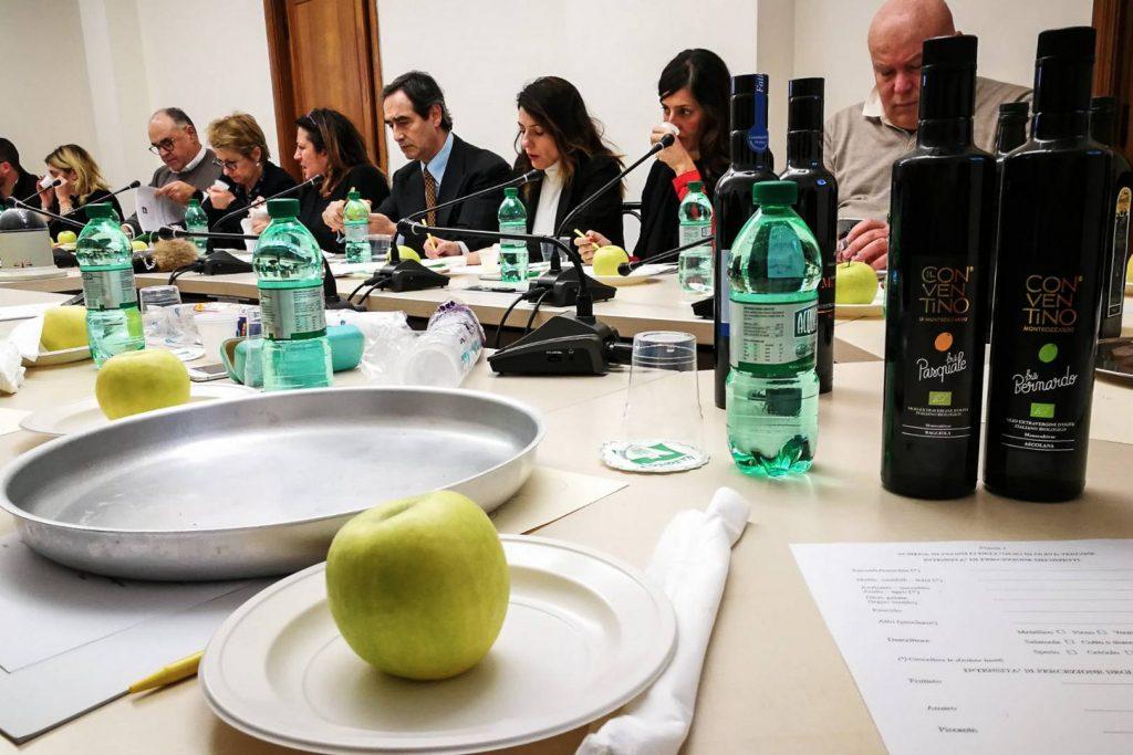 La cultura dell'olio - Op Latium - Conventino Monteciccardo