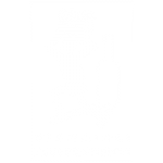 FIVI Logo